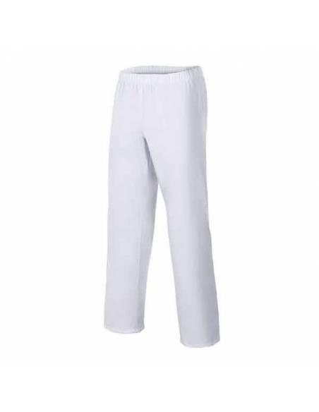 Pantalón Sanitario blanco cintura de goma bolsillo trasero